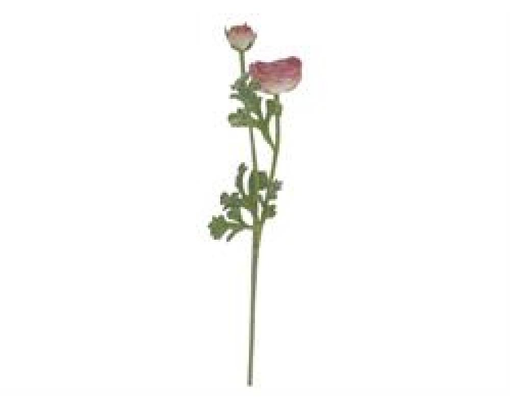 Chic Antique Ranunkel antique rose-31